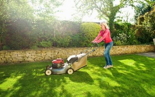 Mow The Lawn In Short Spring Window Experts Warn Via Telegardening