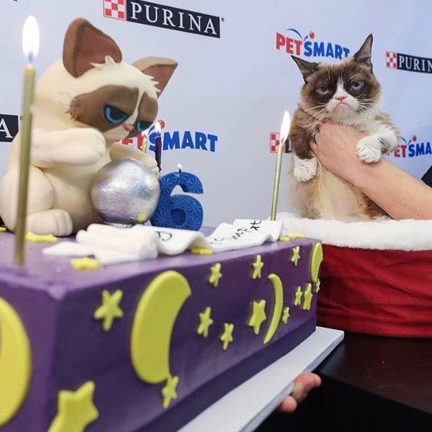 Its your party; you can frown if you want to! Wishing a not-so-grumpy belated birthday to one of our favorite felines, @RealGrumpyCat We cant lie..we definitely werent grumpy making this cake! #TeamGrumpy #GrumpyCat