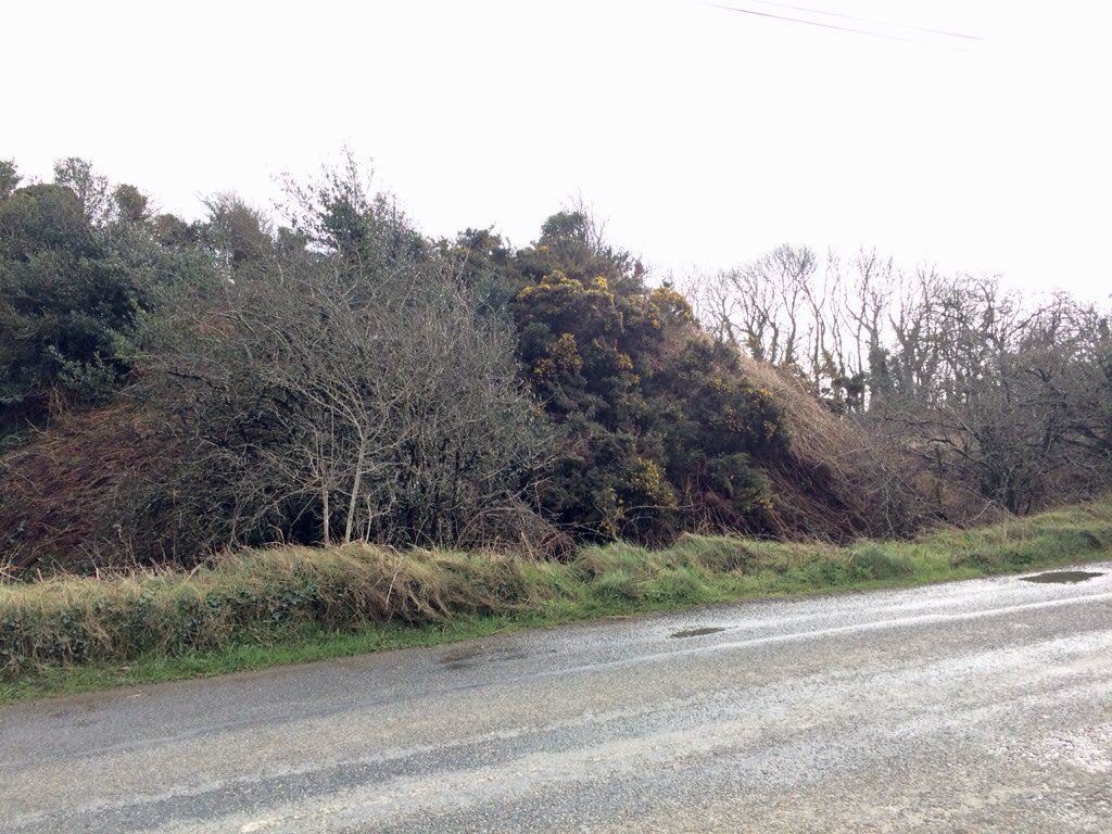 Seeing as this is International Monuments Day I had the chance lately to visit a really well preserved Anglo Norman motte and Bailey earthwork at Newcastle, south Wexford. It's a beauty. Probably reused earlier ringfort as a bailey #monuments  #internationalmonumentsday<br>http://pic.twitter.com/0IqNK20HcF