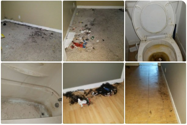 how to get rid of a bad tenant
