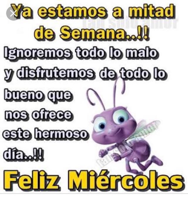 Puro Sinaloa On Twitter Muy Buenos Días Feliz Miércoles Saludos Y