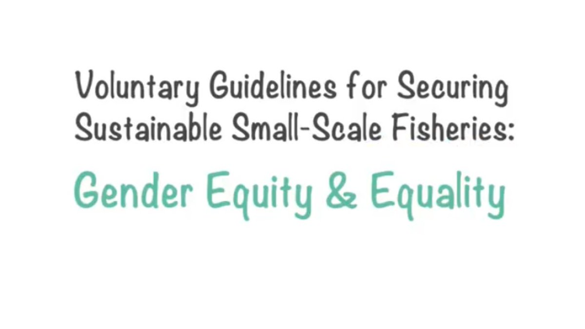 #gender and #smallscalefisheries: check out our new video animation @  https:// youtu.be/BolcVAAyEOw  &nbsp;  . Thanks to #icsf #abalobi #geewhiz #genderaquafish #TBTI #ifad and other colleagues for inputs! #SSFGuidelines<br>http://pic.twitter.com/qUhiiLTiG5