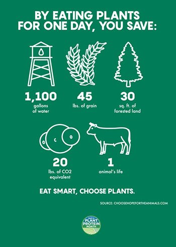 Going meatless for just one day a week can make a huge difference for your body and the planet.  http:// bit.ly/2okf653  &nbsp;   #plantproteinmonth #meatlessmonday #earthday #EarthDay2018<br>http://pic.twitter.com/vrrw2zjRdb