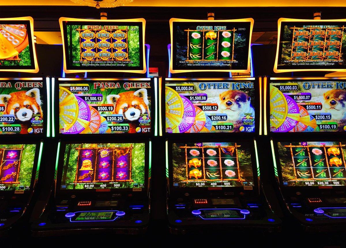 Golden gecko slot double double bonus poker trainer