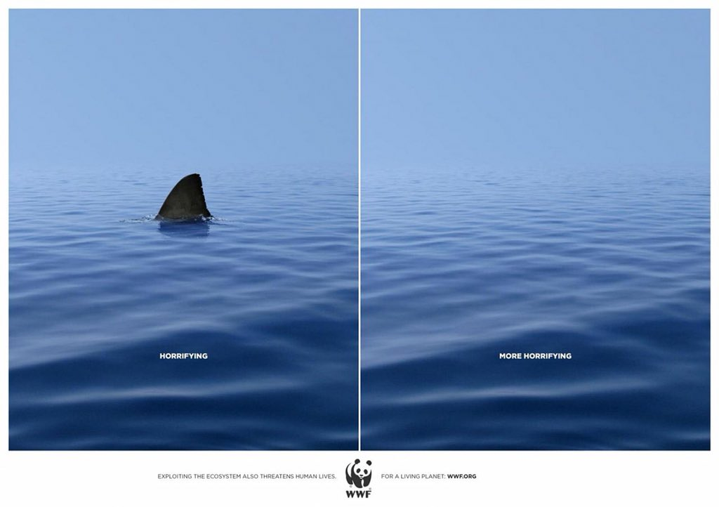 มีฉลามในน้ำอาจจะดูน่ากลัว แต่ไม่มีจะยิ่ง...