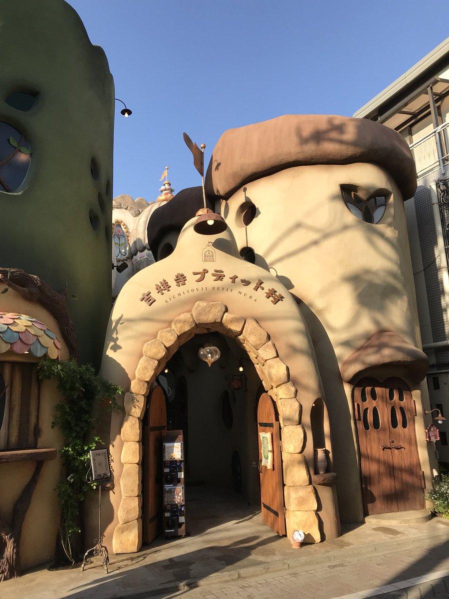 吉祥寺に新しくできたら猫カフェが建物から気合い入ってて凄すぎる