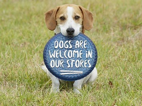 Did you know? All @GOoutdoors stores are #DogFriendly!
