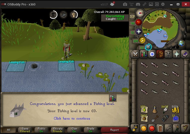 Minnows Osrs