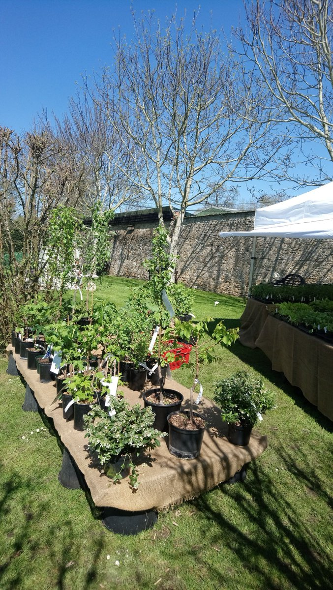 Plants, plants & more plants! The exhibitors are setting up ready for the first day of the Spring Garden Show tomorrow.  If you're in the market for plants you know where to come!  20-22 April from 10am. Admission £3.50, concessions £3 & U16s free. Only assistance dogs permitted.