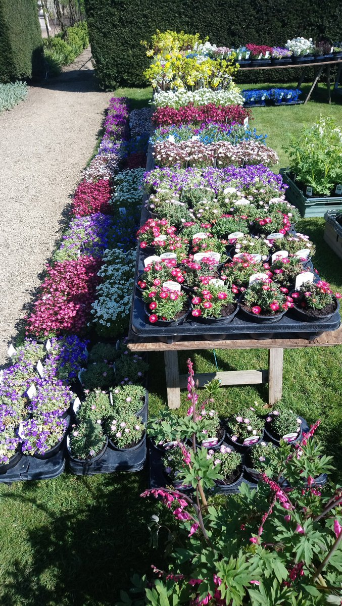Talking of plants - we've got the wonderful @PKDavisNursery with us for the 3 days of the Spring Garden Show (20-22 Apr) with their beautiful alpines and perennials. https://t.co/slYDdEjH50