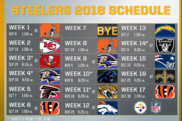 The Pittsburgh Steelers 2018 Reg