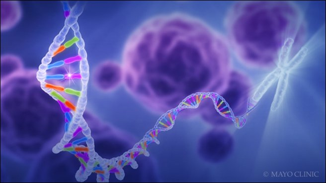 Mayo Clinic researchers are working to end diagnostic odysseys for families with rare diseases. https://t.co/FenCN6egLB