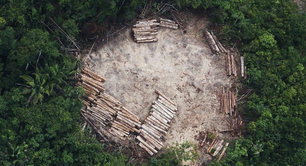 Nenhum mandante de mortes no campo em MT desde a década de 80 foi punido, diz Pastoral da Terra https://t.co/4a2Nq4LzwU #G1