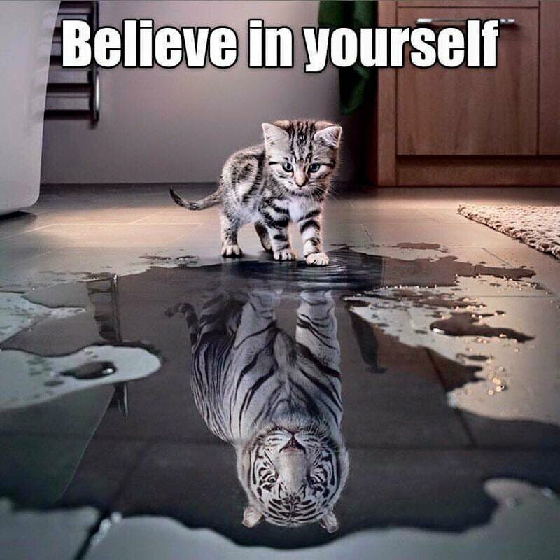 All you have to do is believe in yourself &amp; you can be who you want to be  #ambition #motivation #courage #dedication #success #FridayMotivation #FridayFeeIing<br>http://pic.twitter.com/WQ1PL0V9jo