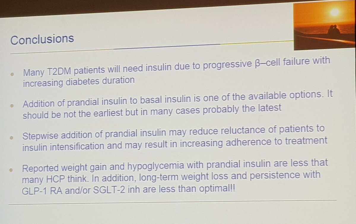 Interesting conclusions of Dr.Ampudia in the Intensification with #insulin  #SEDIAB18<br>http://pic.twitter.com/W93YZlohz3