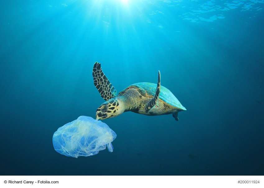 How much plastic is in the ocean &amp; where did it come from? #EUfunded researchers are creating 3D maps of plastic pathways using advanced computer modelling &amp; extensive field research, to help target policies to #EndPlasticPollution  http:// ec.europa.eu/research/infoc entre/article_en.cfm?artid=48156&amp;pk_campaign=rtd &nbsp; …  #EarthDay2018 #H2020 <br>http://pic.twitter.com/qMQGzEYbjE