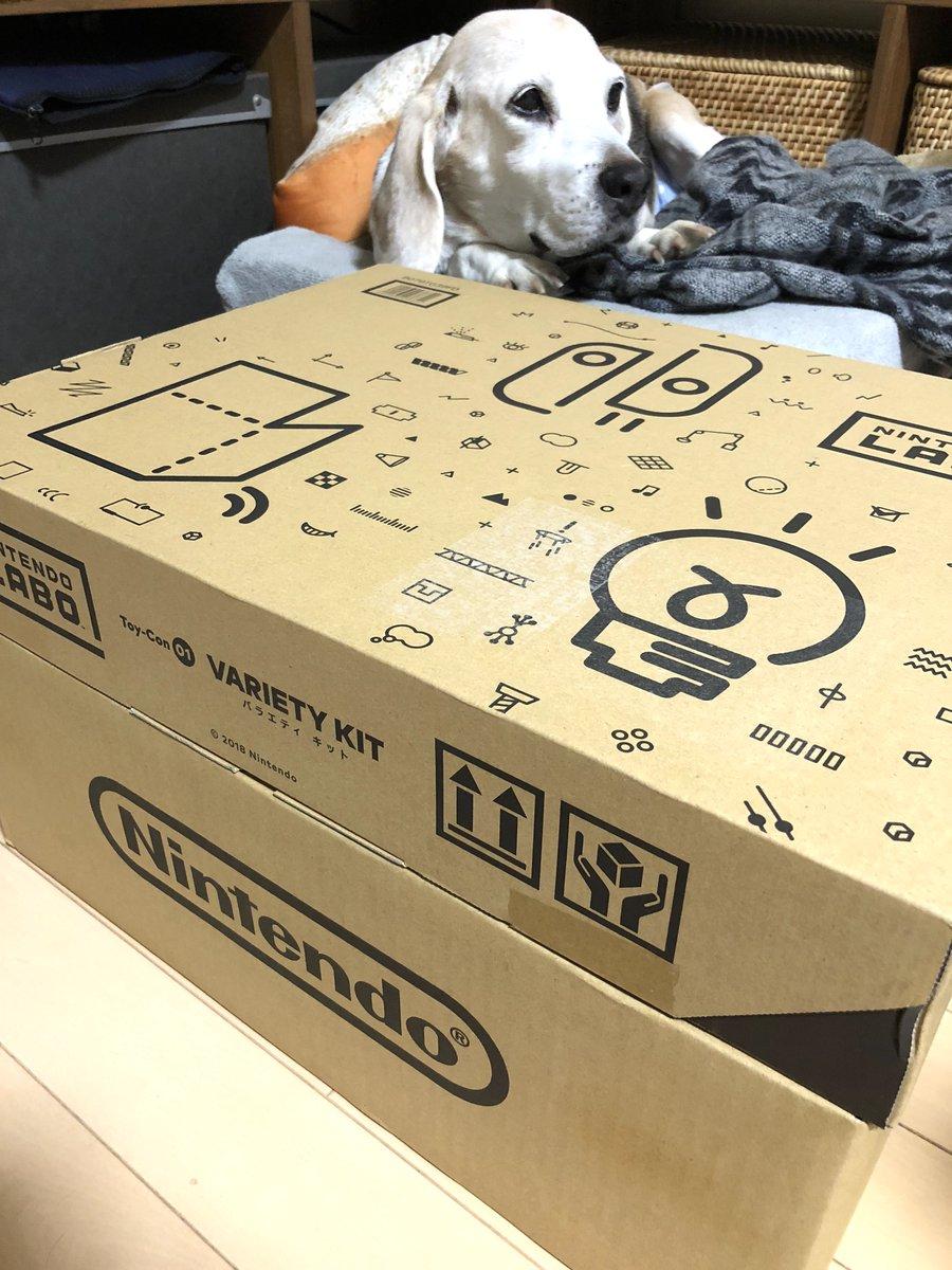 明日一日楽しめるのが届いた!Nintendo Labo のバラエティキットx2、ロボットキットx1!