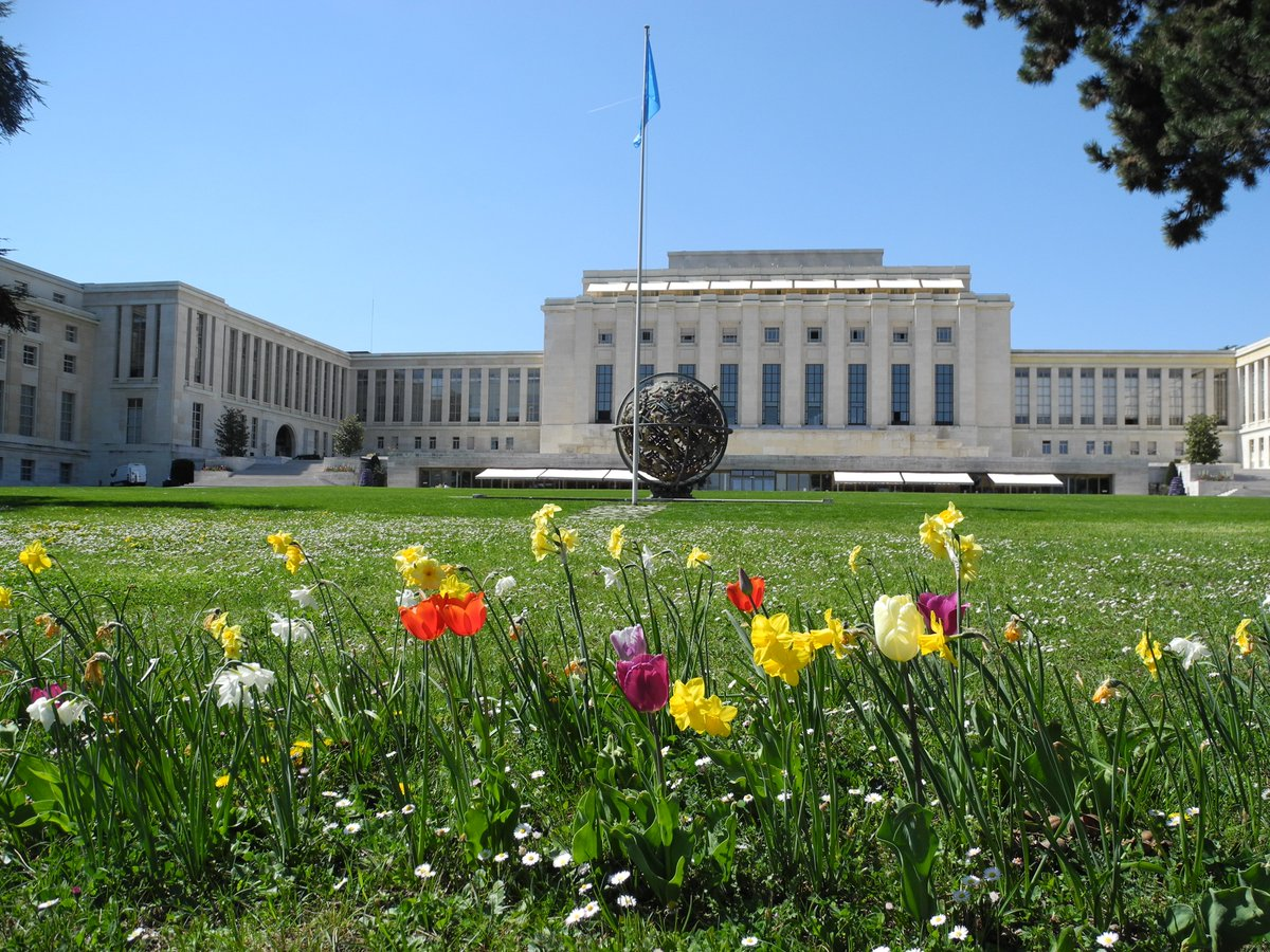 Spring scenes in UN Geneva's Ariana Park, with seasonal flowers in bloom 🌷💐  The 46-hectare park is a haven for biodiversity. Learn more: https://t.co/vooy1xBEau