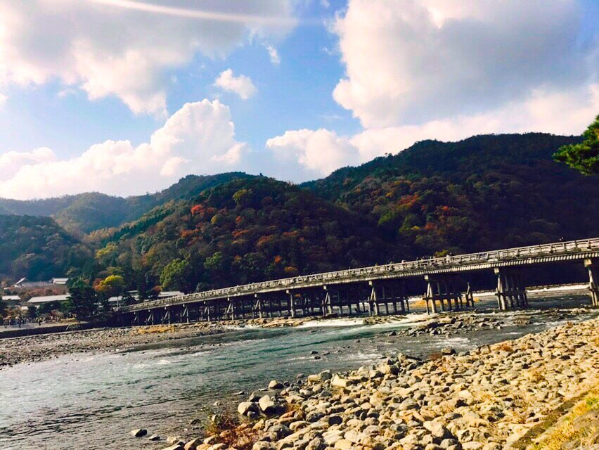 どうせ実施EDカットなんでしょ!?!?秋の京都です!!!!!!!!!!