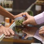Legalizing marijuana nationwide would create one million jobs, study says https://t.co/D8CO7FZ7nf #420 #CannabisNews