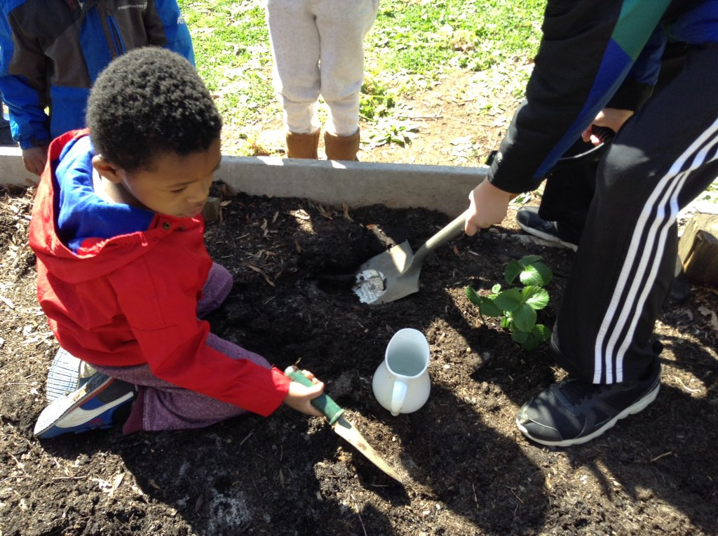 Students <a target='_blank' href='http://twitter.com/APSDrew'>@APSDrew</a> celebrate <a target='_blank' href='http://search.twitter.com/search?q=EarthDay'><a target='_blank' href='https://twitter.com/hashtag/EarthDay?src=hash'>#EarthDay</a></a> by planting flowers <a target='_blank' href='http://twitter.com/APSVirginia'>@APSVirginia</a> <a target='_blank' href='http://search.twitter.com/search?q=APSisAwesome'><a target='_blank' href='https://twitter.com/hashtag/APSisAwesome?src=hash'>#APSisAwesome</a></a> <a target='_blank' href='https://t.co/XRYQQwqWsg'>https://t.co/XRYQQwqWsg</a>