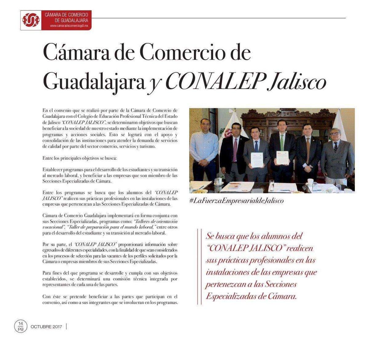 Lujo Reanudar El Desarrollo Laboral Embellecimiento - Ejemplo De ...