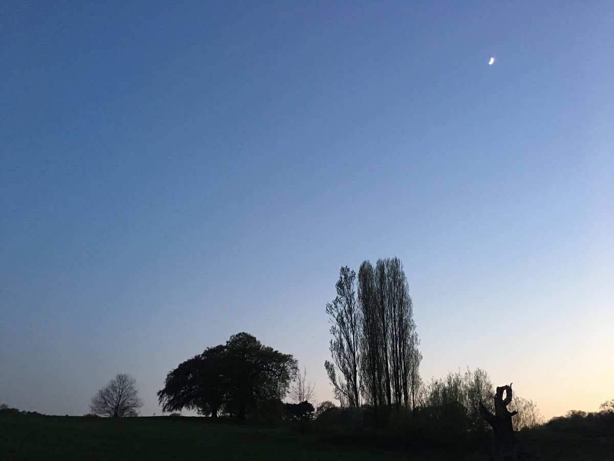 test Twitter Media - Just loving it tonight on the Heath...with crescent moon. https://t.co/h0wdxTMSps