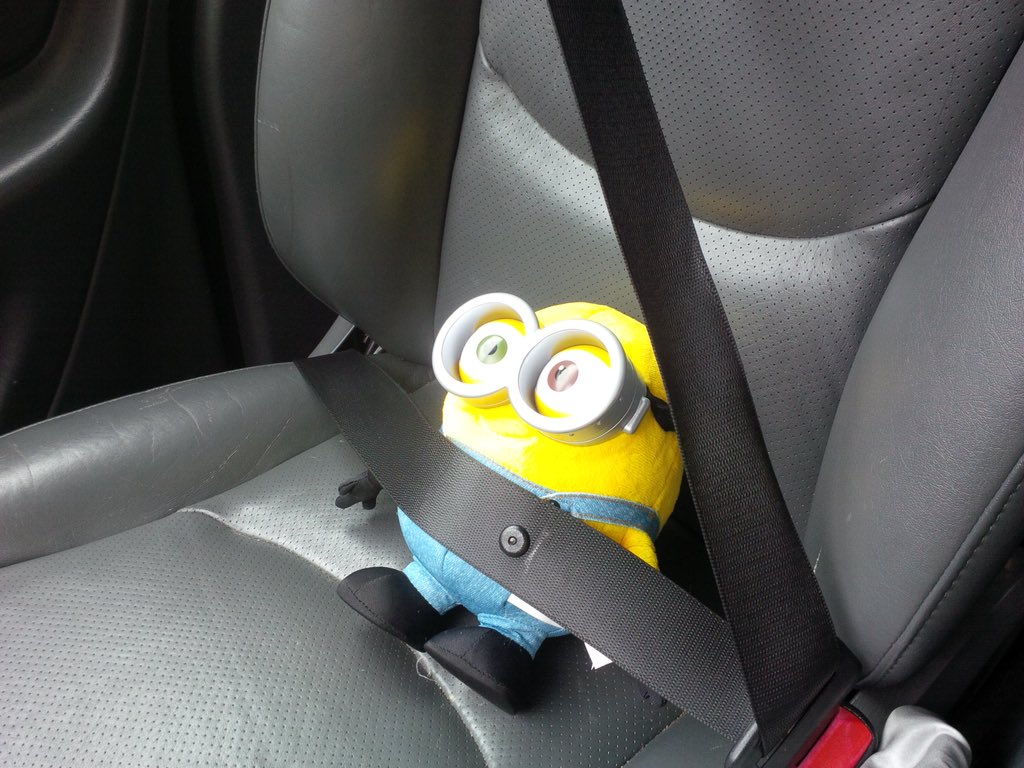 just saw this poor little guy trapped in a hot car do i break the window