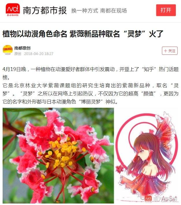 中国の新種の花の名前が霊夢って… こりゃ霊夢だ