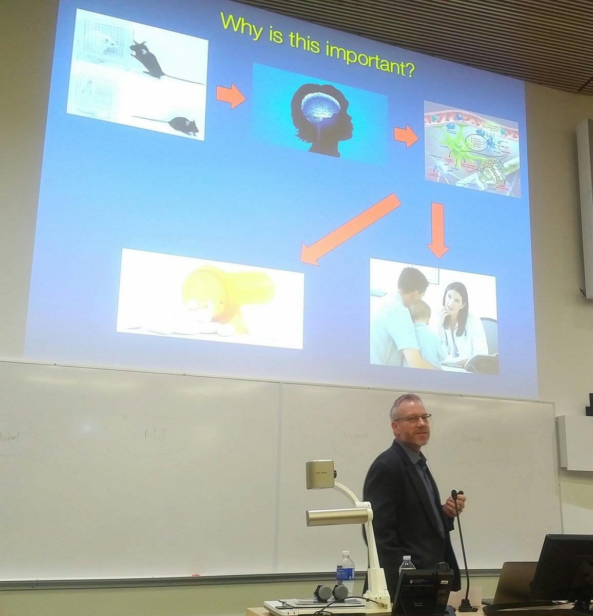 book web engineering and peer to peer computing networking