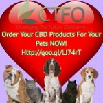 To Find Out How CBD products Help Protect Your Pets Too! Click NOW! https://t.co/F7mPJ3JZ35 #veterinarian, #cbdandpets, #healthypet, #cbdoilforpets, #cbdoil, #hempoil,