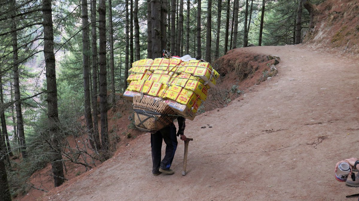 That is a LOT of noodles. Called Rara noodles in Nepal, or ramen noodles elsewhere, they are a common meal in the many teahouses along the Khumbu trek. And I thought my pack felt heavy… #Nepal #EverestTrip #2017<br>http://pic.twitter.com/ivVAFpfmvS