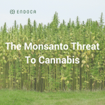 What threats is the #cannabis industry facing? With a great growth-spurt in 2017, you'd think that nothing can stop the #CBD and hemp market. Unfortunately, some #surprising competition could be dire for us all. Our amazing blogger, Leora, has the insight: https://t.co/ehs3HMhaia