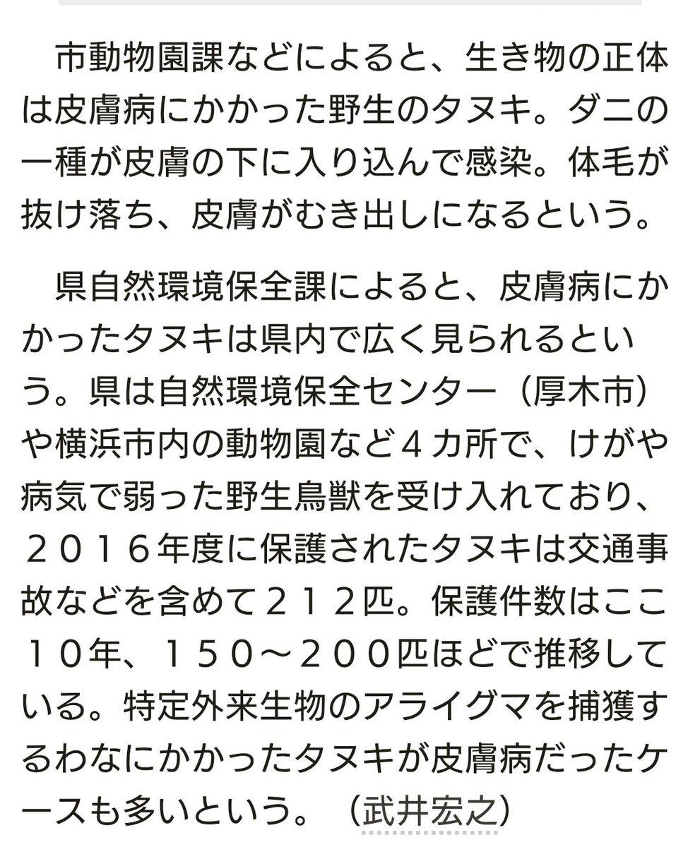 【デマ注意】元の記事に「ダニが原因の皮膚病」と書かれているんですが、このヒトや「いいね」つけてるヒトは日本語が読めないんでしょうか。