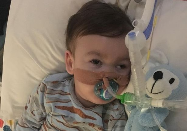 Alfie Evans' Parents Lose Supreme Court Case, Judge Says Hospital Can Yank Life Support Without Their Consent https://t.co/fp46W3HqSB #AlfiesArmy #ALFIESARMY16