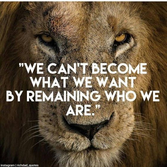"Motivational Quotes With Lion Images: DanaGarrison On Twitter: ""We Can't Become What We Want By"
