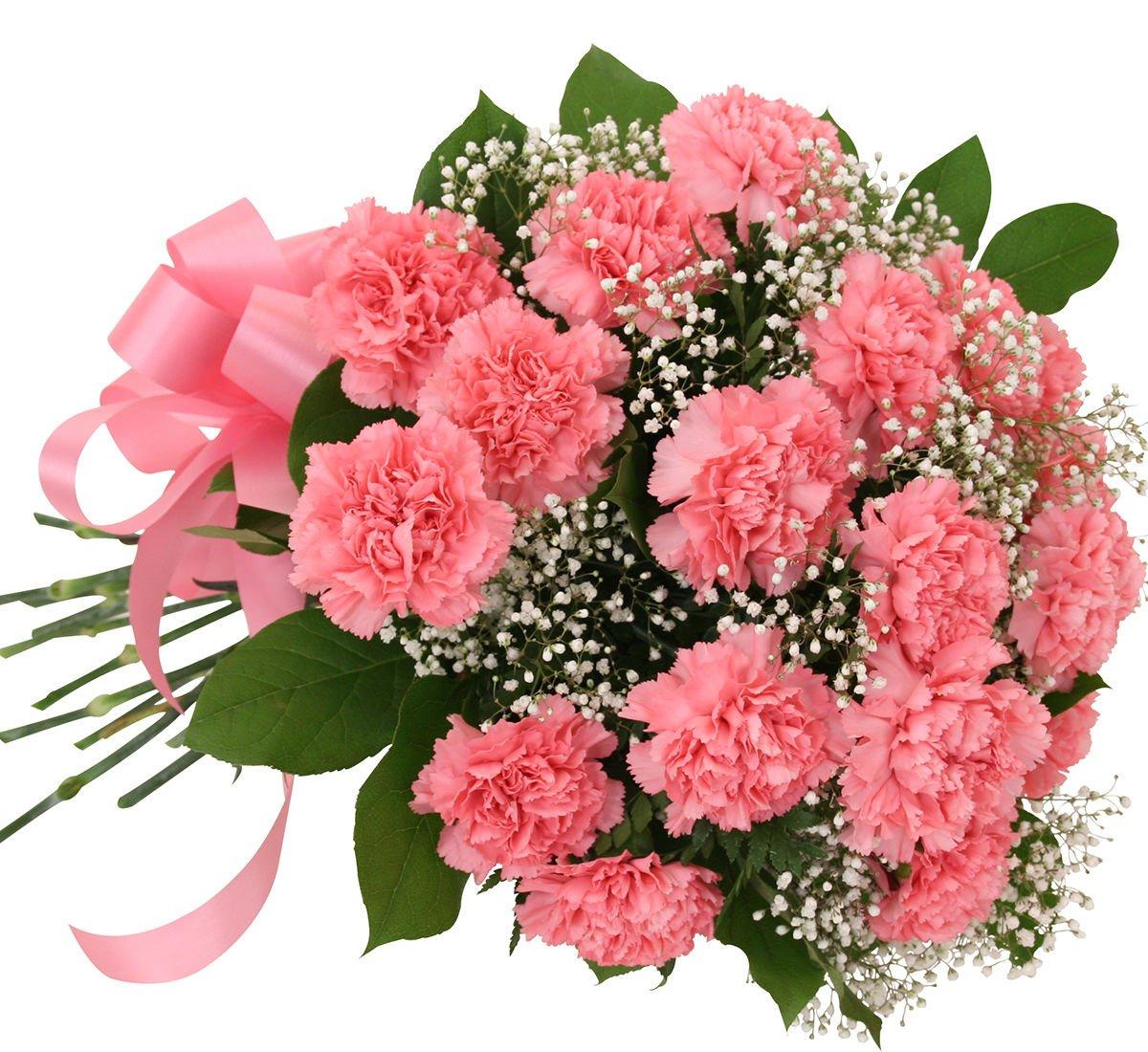 Картинки с красивым букетом цветов гвоздики, своих подружек