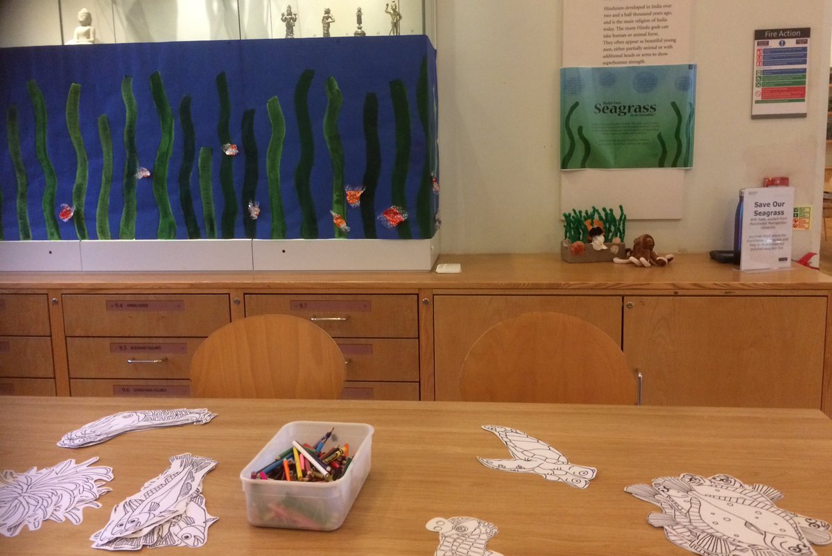 Come help us repopulate and de-litter our seagrass meadow today at @McrMuseum!   #BigSaturday #ManchesterMuseum #manchester #activitiesforkids #publicengagement #outreach #scicomm #phdchat<br>http://pic.twitter.com/IjWcAucMMj