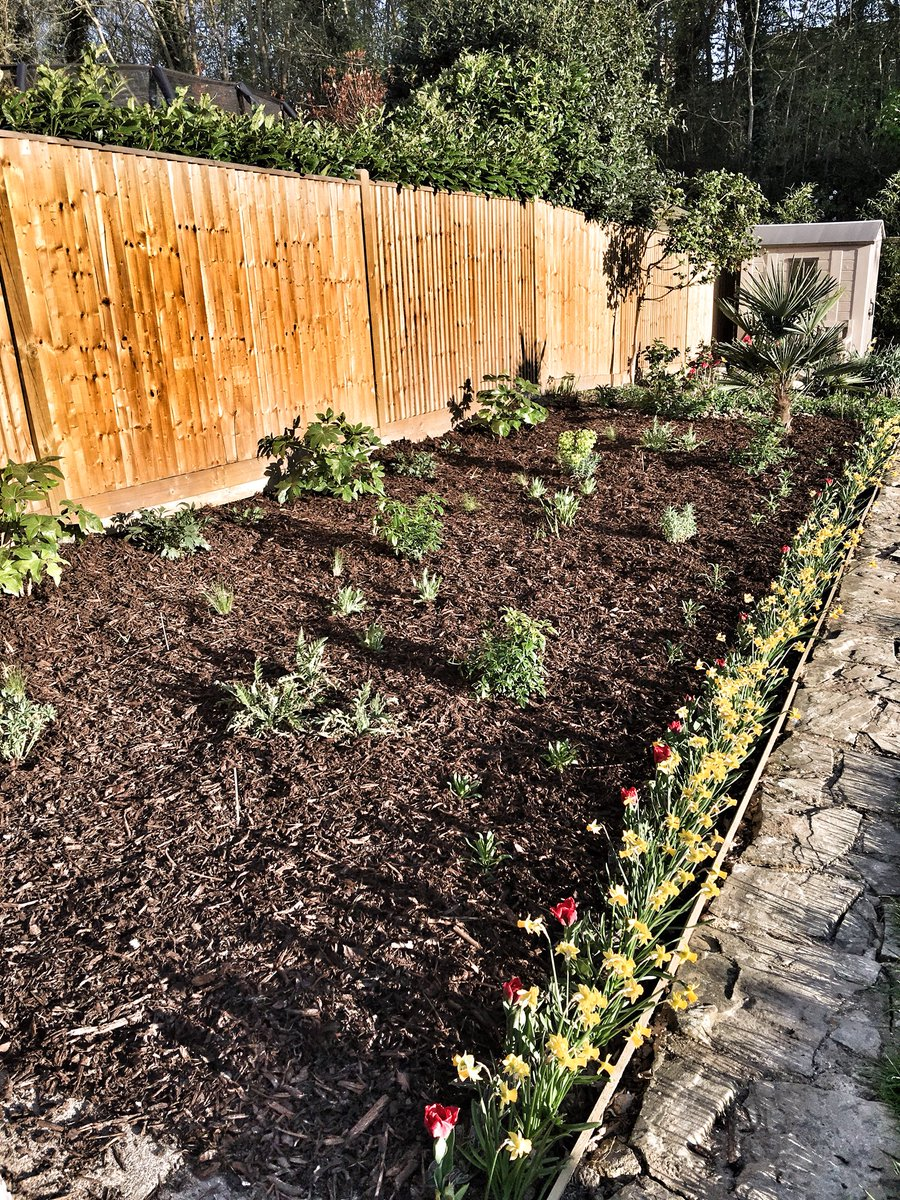 Finally the new border is done! Now I just need everything to grow and then see what other plants can be added!  #gardening #gardens #mygardentoday #plants #landscaping #projects <br>http://pic.twitter.com/9w56zz3pSu
