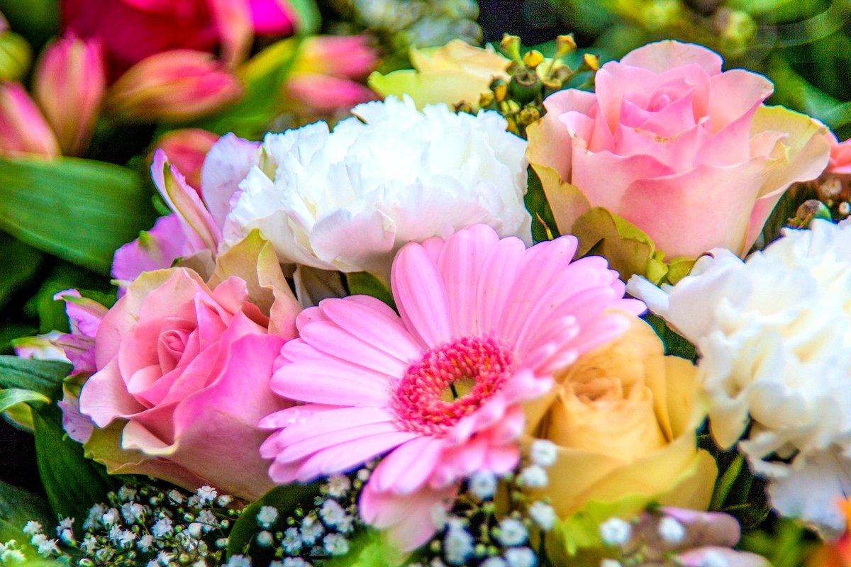 Artificial Flowers Online Fiflowerdubai Twitter
