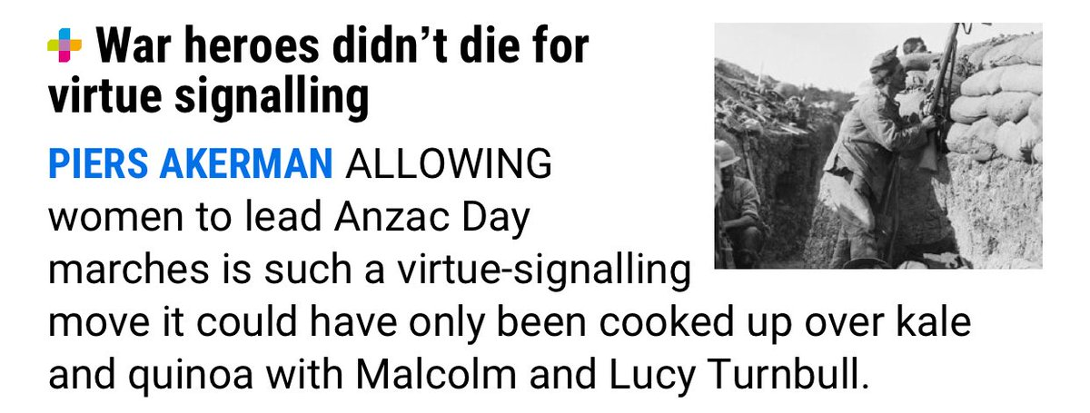 'Virtue signalling' is always whatever the person using the term disagrees with. Arguably days to commemorate soldiers are a form of virtue signalling.