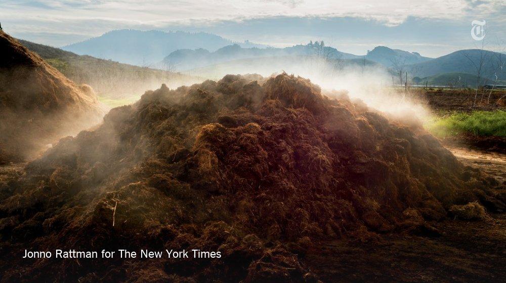 Can dirt save the earth? https://t.co/BjDV2jGArv https://t.co/bg4LPH0oBA