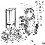 猫が花瓶を割ってしまったら叱る?言葉が分かると叱れないかもw
