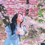 #HappyCHAEYOUNGday