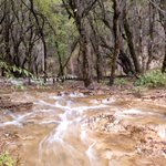 Image for the Tweet beginning: A great waterfall at Munigou
