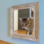 このアイデア最高!扉などに猫の窓をつけている人は額をつけるとトリックアート風にw