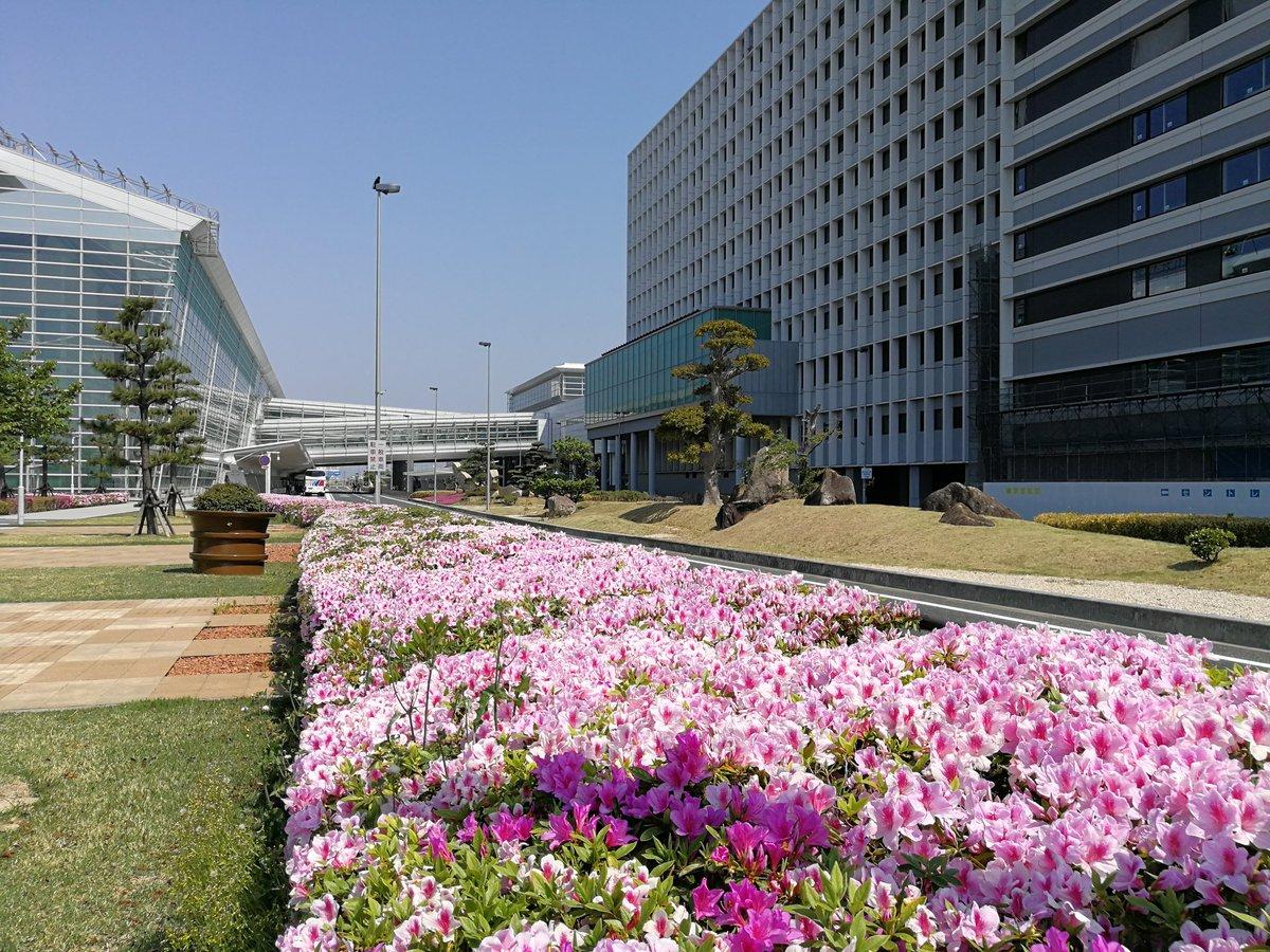 空港 中部 ホテル 国際 セントレア