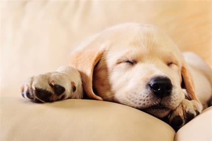 Monday morning mood.    #MondayMorning <br>http://pic.twitter.com/TdYt6kmORN