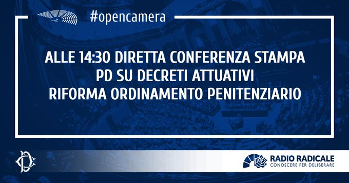 #OpenCamera Foto