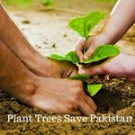 #PlantTreesSavePakistan